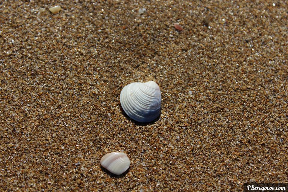 золотой пляж песок