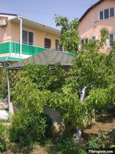 гостевой дом в береговом, май