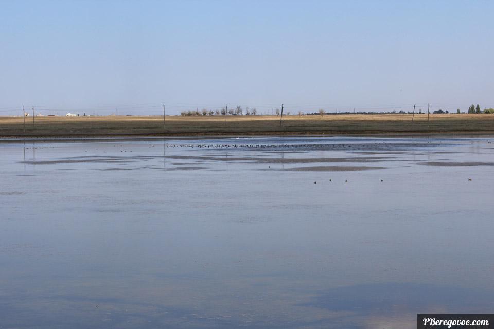озеро в Береговом