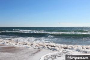 море и чайка